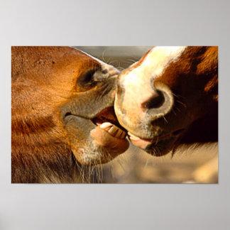 Kissing Horses Poster