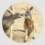 Kissing Kangaroos Classic Round Sticker