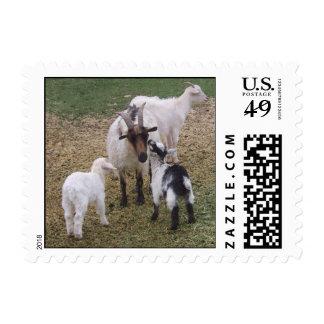 Kissing Kid v2 Stamp