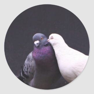 Kissing Love Birds Classic Round Sticker