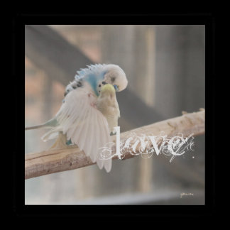 Kissing Love Birds Photo Personalized Custom Acrylic Tray