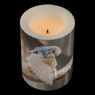 Kissing Love Birds Photo Personalized Custom Flameless Candle