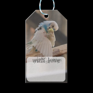Kissing Love Birds Photo Personalized Custom Gift Tags