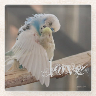 Kissing Love Birds Photo Personalized Custom Glass Coaster