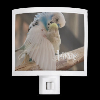 Kissing Love Birds Photo Personalized Custom Night Light