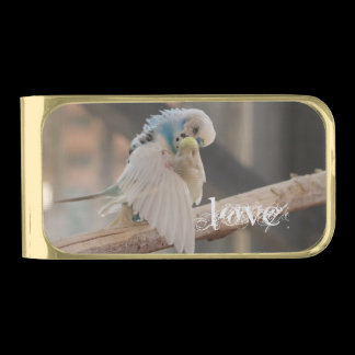Kissing Love Birds Photo Personalized Gold Finish Money Clip