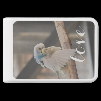 Kissing Love Birds Photo Phone Charger /
