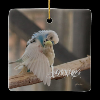 Kissing Love Birds Photo Rearview Mirror Hanger / Ceramic Ornament