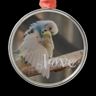 Kissing Love Birds Photo Rearview Mirror Hanger / Metal Ornament
