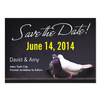Kissing Love Pigeons Save the Date Announcement