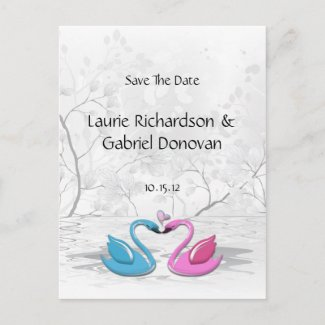 Kissing Love Swans Save The Date Post Card