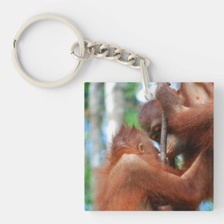 Kissing Orangutans Single-Sided Square Acrylic Keychain