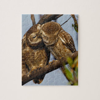 Kissing Owls Jigsaw Puzzle