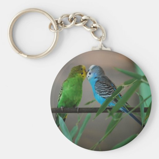kissing parakeets basic round button keychain