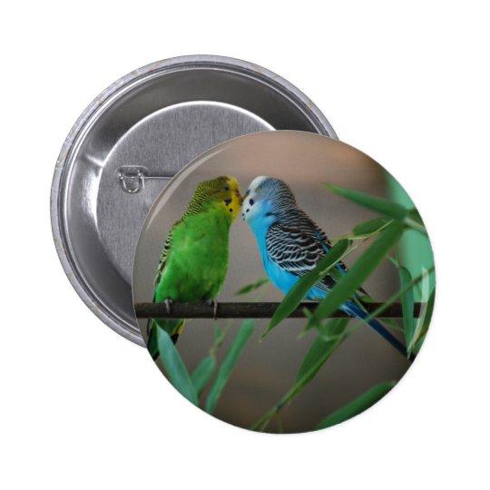 kissing parakeets button