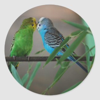 kissing parakeets classic round sticker