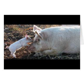Kissing Piglet Card