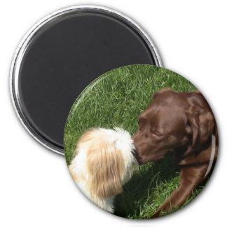 Kissing Shihtzu & Choc. Lab Dogs Refrigerator Magnets