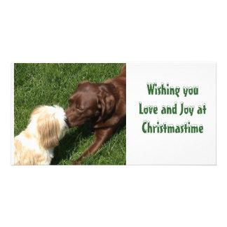 Kissing Shihtzu & Choc Lab Dogs Xmas Picture Card