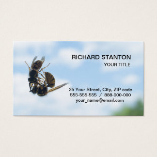 Kissing wasps business card