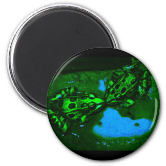 kissy frogs 2 inch round magnet