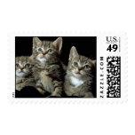 Kit Kat Club Stamps