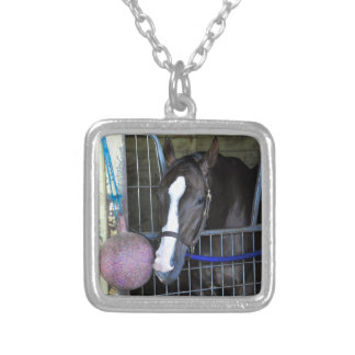 Kitai Silver Plated Necklace