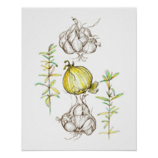 Kitchen Art Onions Garlic Rosemary Herb Drawing Poster