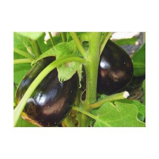 Kitchen collection eggplant photograph art canvas print