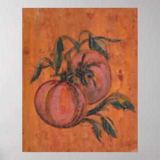 Kitchen Decor Collection - Tomatos Poster