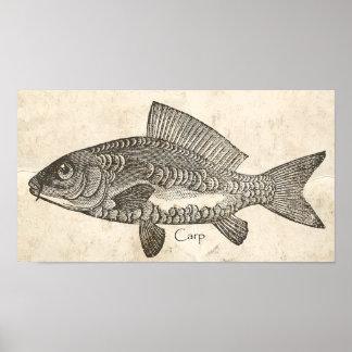 Koi fish art framed artwork zazzle for Decorative carp