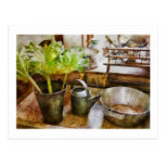 Kitchen - Eat your greens Postcard