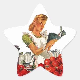Kitchen Star Stickers Vintage Cooking Recipe Salsa