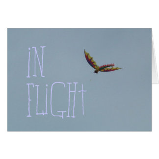 Kite Flying at the Oregon Coast Card