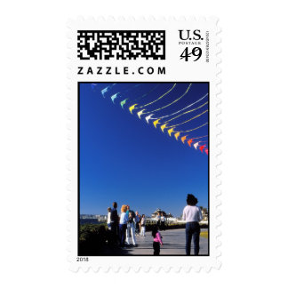Kite Flying Postage