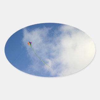 Kite Oval Sticker