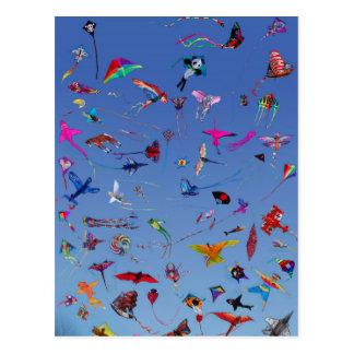 Kites Kites Kites In the Sky Postcard
