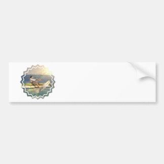 Kitesurfing Bumper Sticker