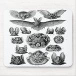 Kitsch Vintage Illustration Crazy Bats Mousepads