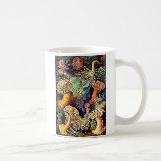Kitsch Vintage Scientific Illustration Anemones Coffee Mug