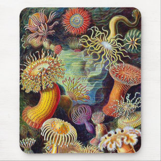 Kitsch Vintage Scientific Illustration Anemones Mouse Pad