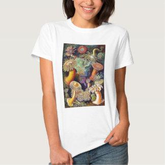 Kitsch Vintage Scientific Illustration Anemones Shirt