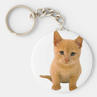Kitteh png keychains