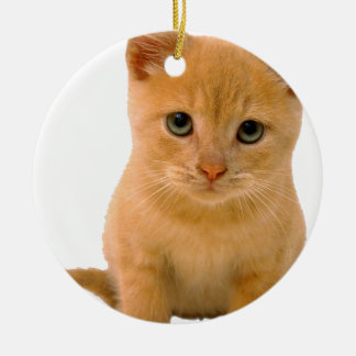 Kitteh.png Double-Sided Ceramic Round Christmas Ornament