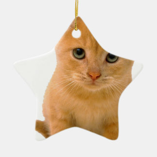 Kitteh.png Double-Sided Star Ceramic Christmas Ornament