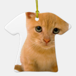 Kitteh.png Double-Sided T-Shirt Ceramic Christmas Ornament