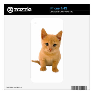 Kitteh.png Decal For iPhone 4S