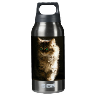 Kitten 10 Oz Insulated SIGG Thermos Water Bottle