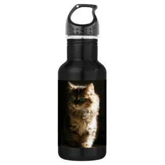 Kitten 18oz Water Bottle