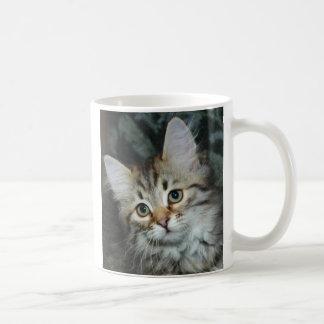 Kitten 2 Mug